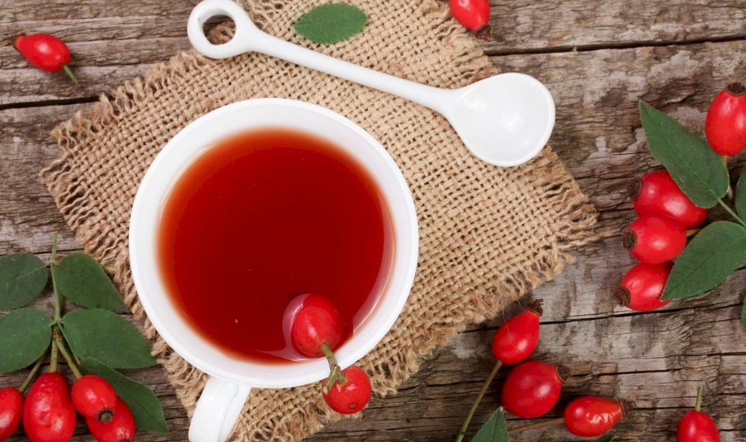 Как приготовить и принимать отвар шиповника из сухих плодов