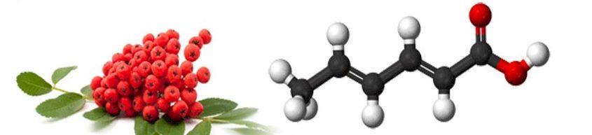 Сорбиновая кислота формула