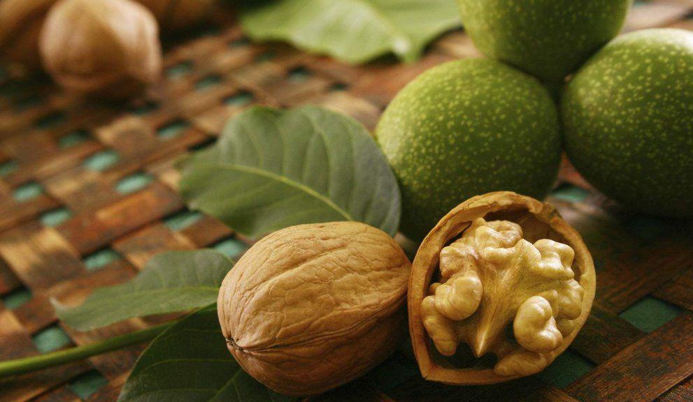 Сколько белка в грецком орехе